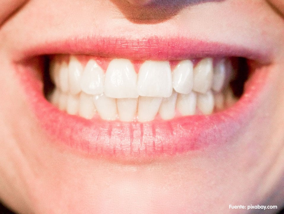 Ortodoncia para adultos | Gross Dentistas